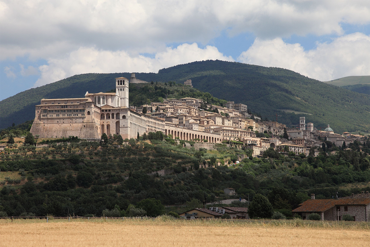 Veduta di Assisi,<br>photo by Michele Tortoioli